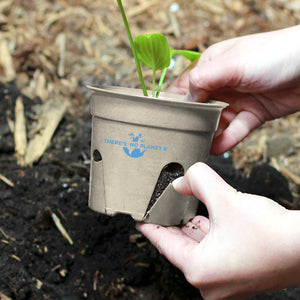 6-Pack of There is no Planet B Compostable Pots + Wildflower Pollinator Seed - Northern Glasses Pint Glass