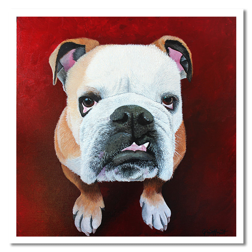 Gift Card - Floyd the Bulldog