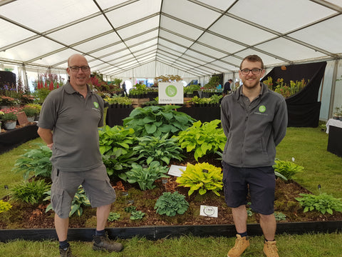 Ollie and Martin of Sienna Hosta National Flower Show 2018