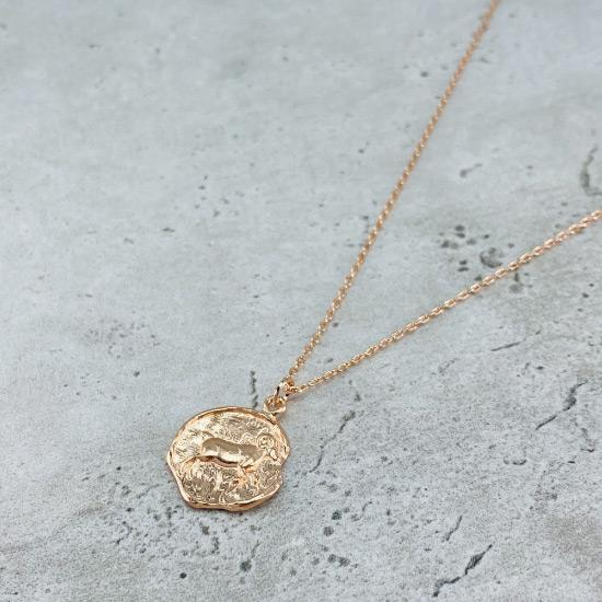Star Sign Coin Necklace - Aries