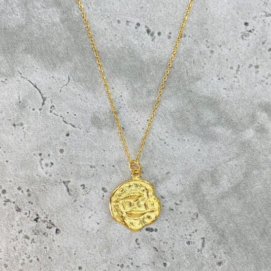 Star Sign Coin Necklace - Pisces