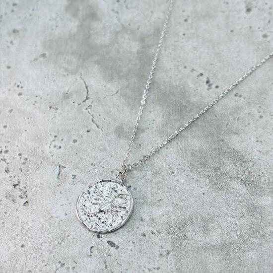 Rhodium Star Sign Coin Necklace - Scorpio