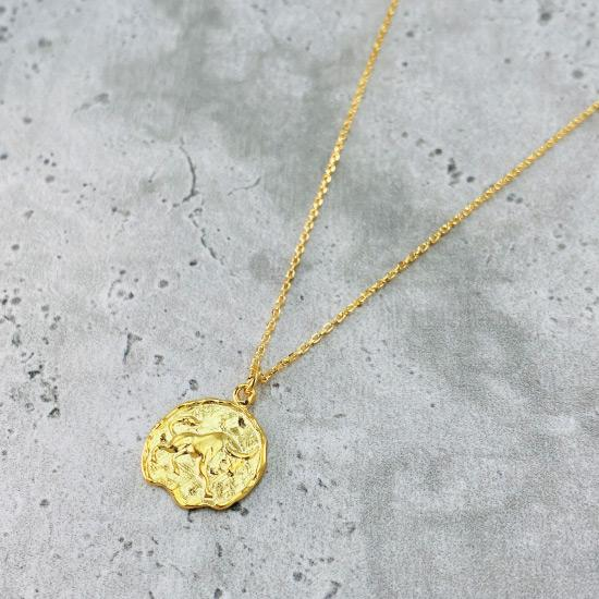 Star Sign Coin Necklace - Taurus