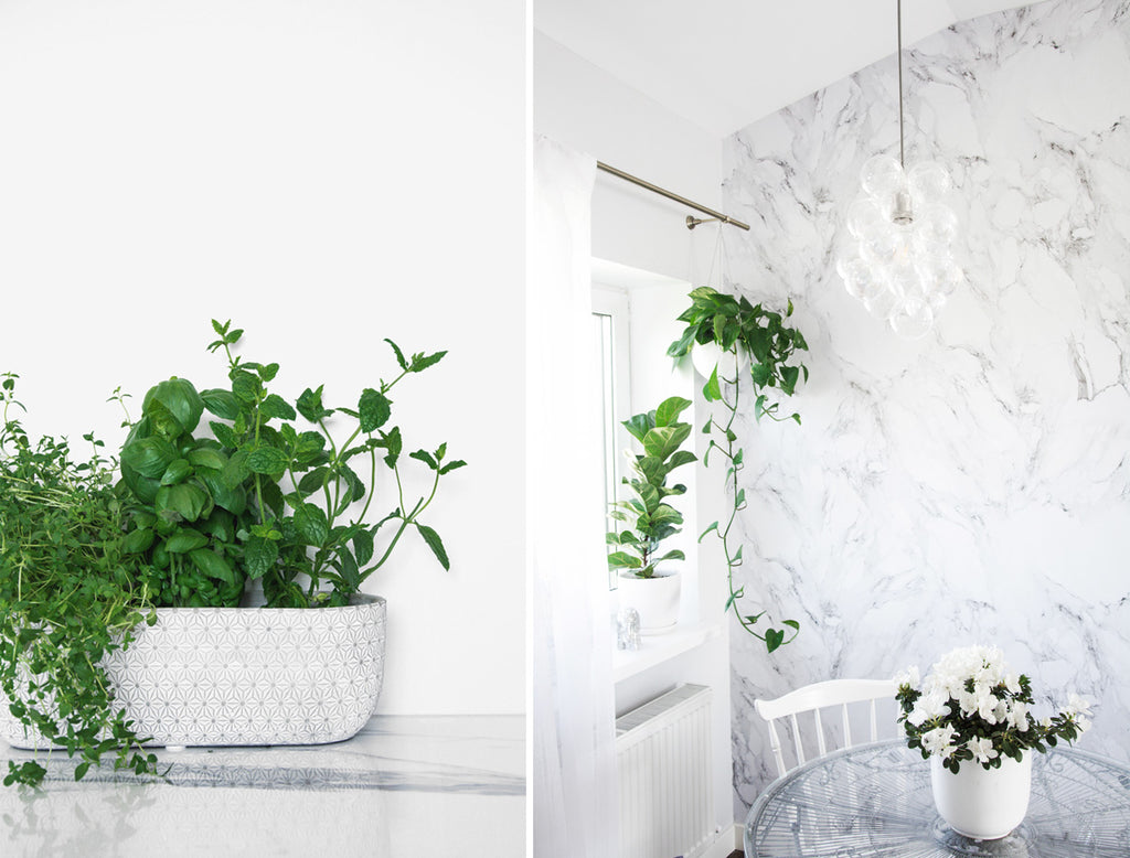 White marble kitchen interior with greenery and bubble chandelier