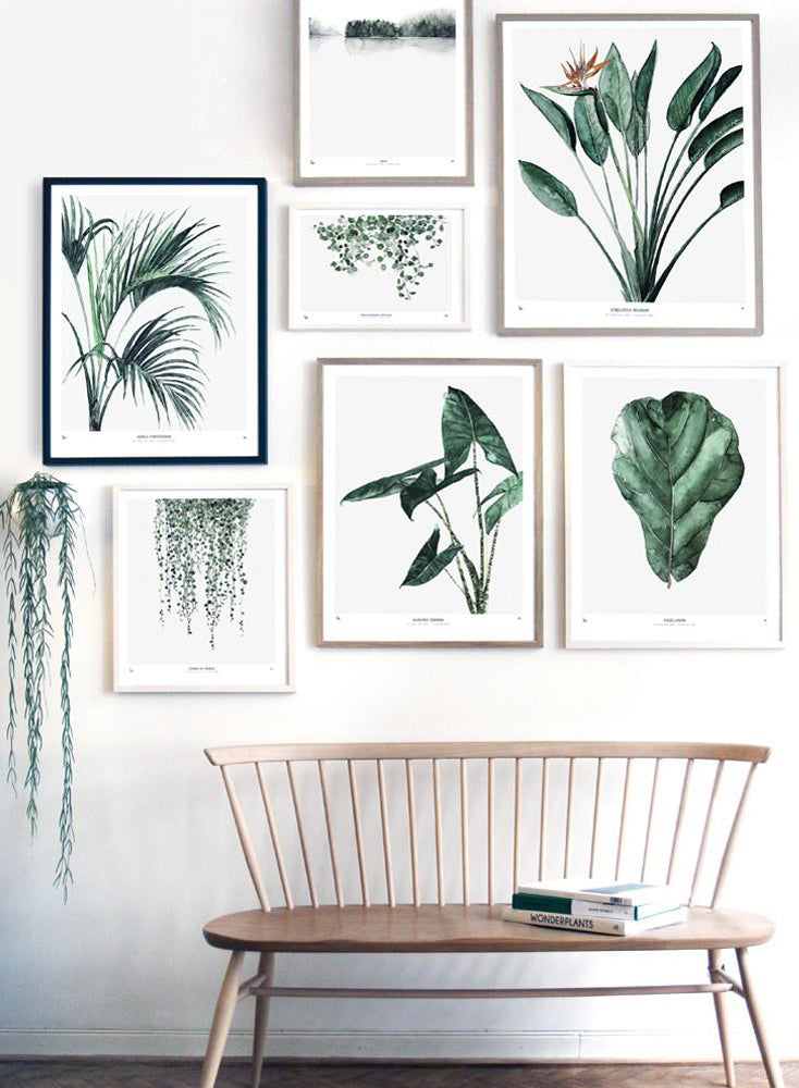 Modern and minimal botanic watercolor art prints