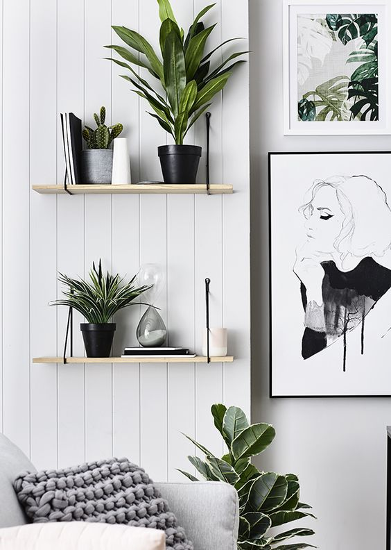 Framed art and plants as a decor