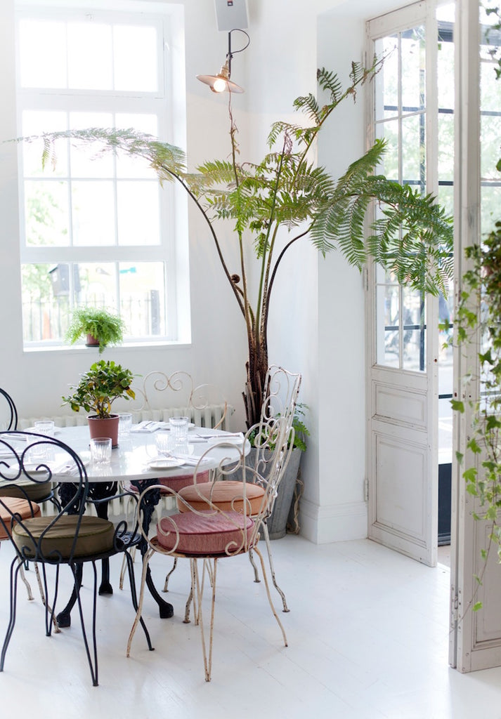 Greenhouse inspired restaurant interior with white floors and rustic furniture