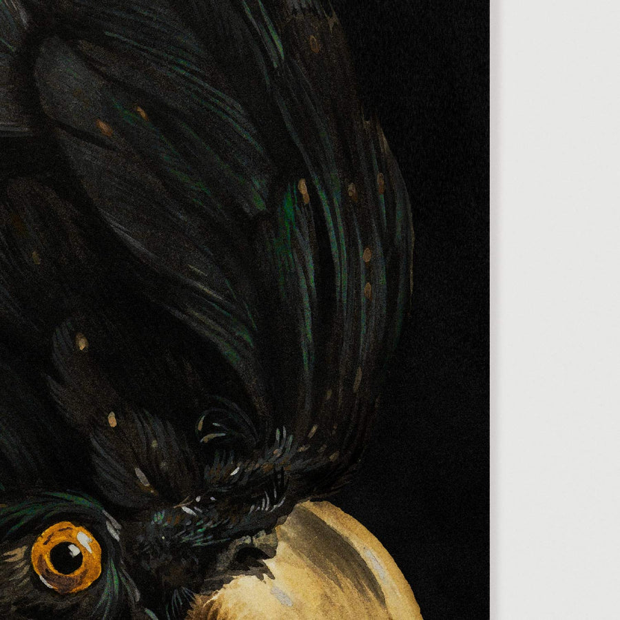 Detailed painting of a black cockatoo