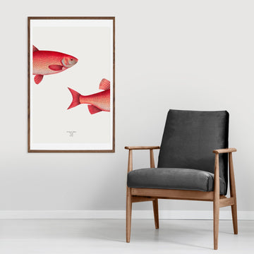 Wall decor fish poster