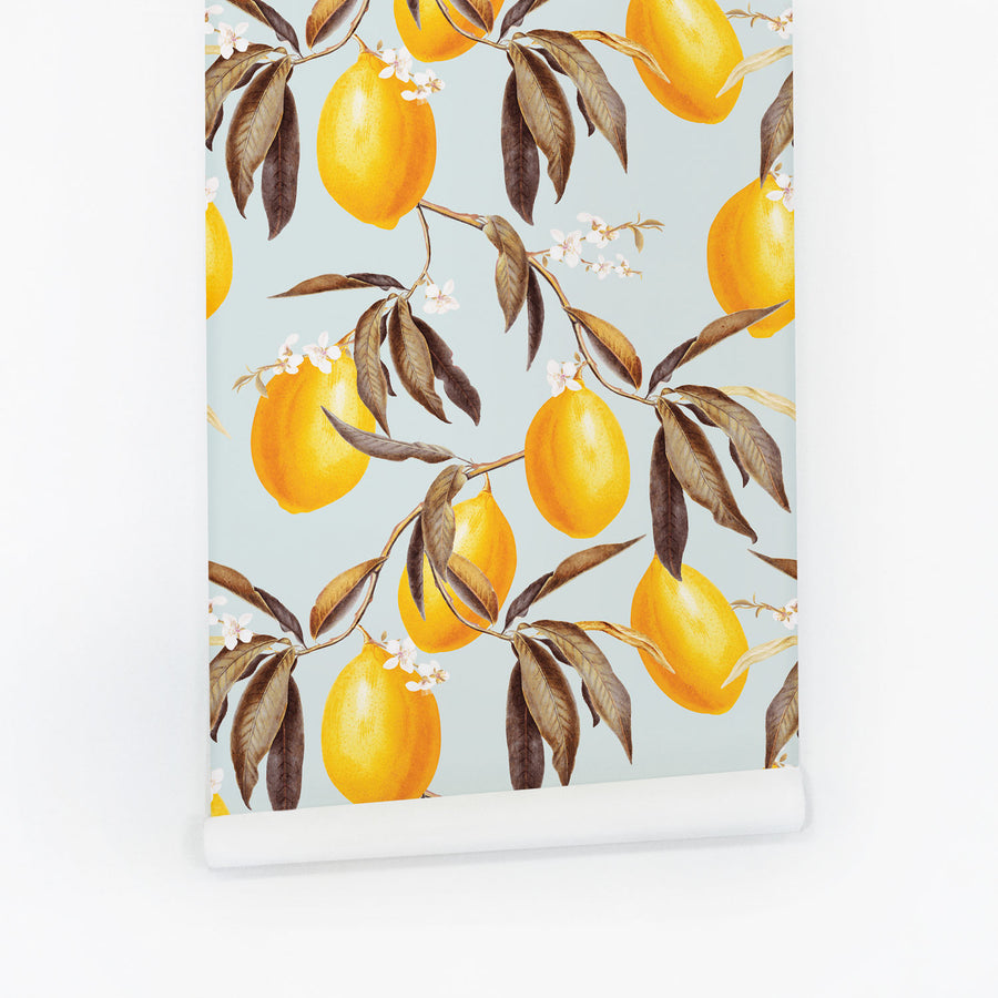 Lemons removable wallpaper designed by Livettes with baby blue and egg yolk yellow colors