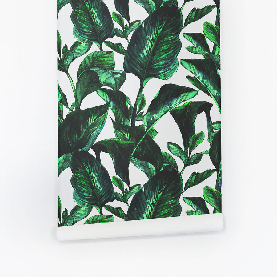 Botanical leaves removable wallpaper wall mural