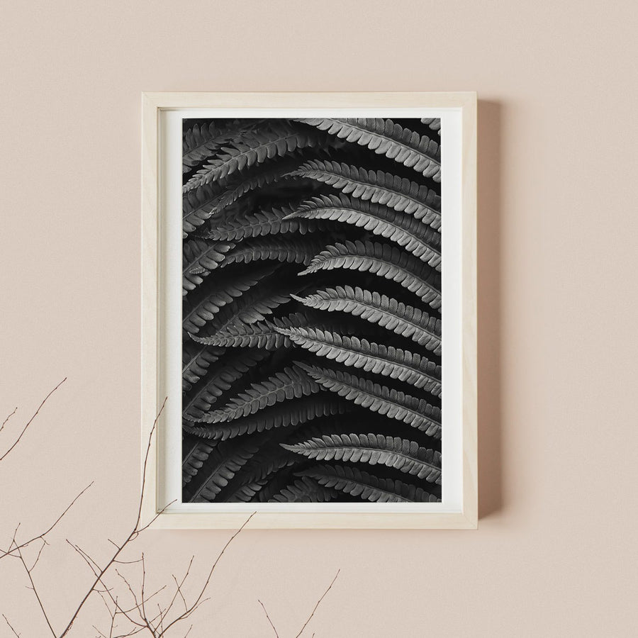 Fern Leaf Photography Poster Print