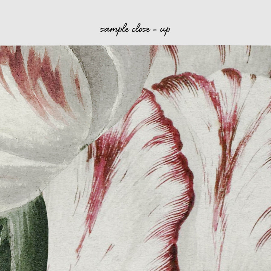 Antique tulips drawing removable wallpaper sample