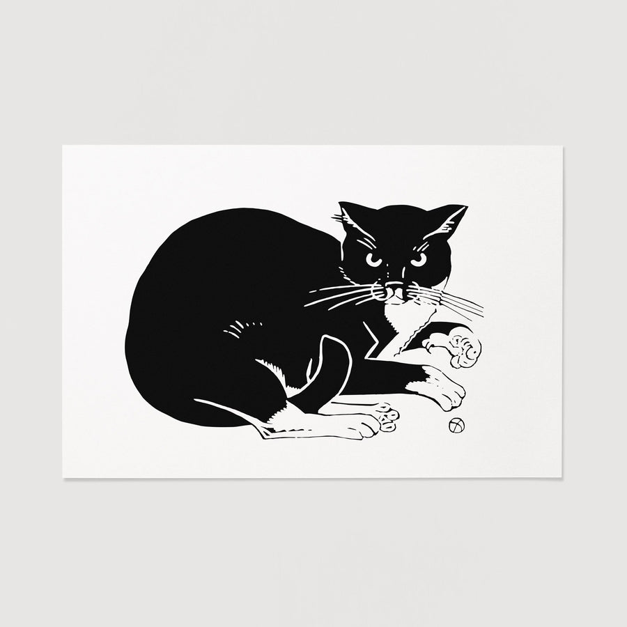 Cat home decor print