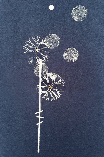 White dandelion printed Blue shirt