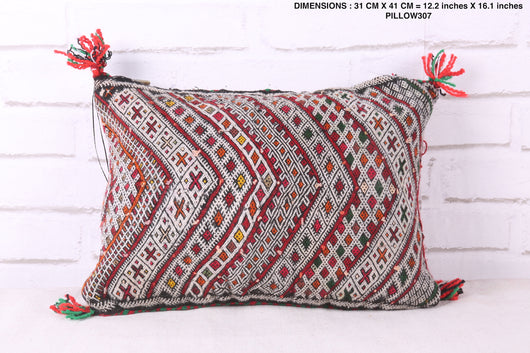 Stylish Moroccan rug pillow