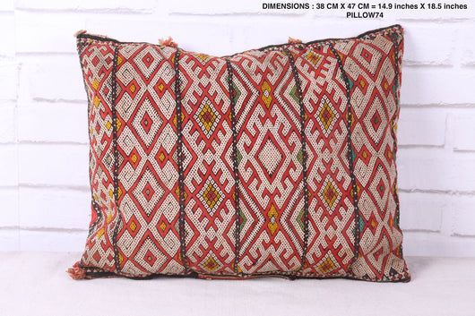 Double-sided Moroccan rug pillow