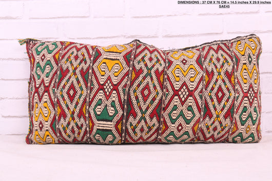 Vibrant, double-sided Moroccan rug pillow