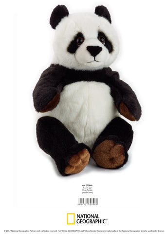 PLUS NATIONAL GEOGRAPHIC URS PANDA 22 CM - VENTURELLI ANGELO (AV770846)