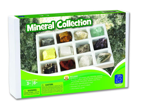 KIT PALEONTOLOGIE - MINERALE - EDUCATIONAL INSIGHTS (EI-5207) Libelula Vesela