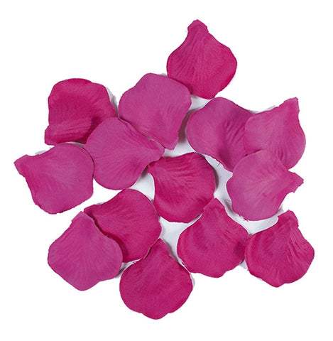 PETALE FUCHSIA DE LUX 100 BUCATI/SET BIG PARTY (BP15050)