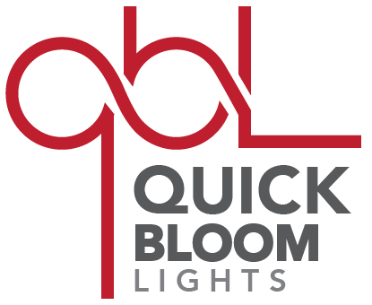 Quick Bloom Lights Logo