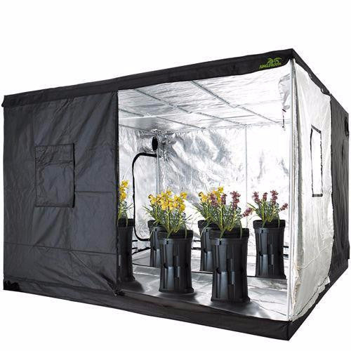 Jungle Room Grow Tent - Hydroponics Setup 295x295x200CM  sc 1 st  Quick Bloom Lights & Hydroponic Grow Tents - Indoor Growing u2013 Quick Bloom Lights
