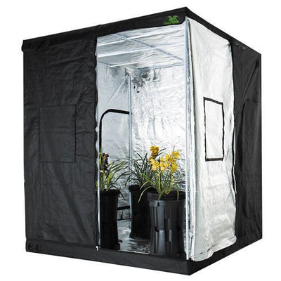 Jungle Room Grow Tent HC High Cube- Hydroponic Setup 200x200x230CM