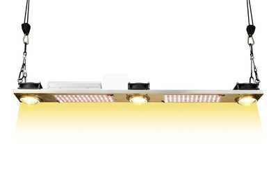 QBL 2 Samsung Diodes and COB Grow light