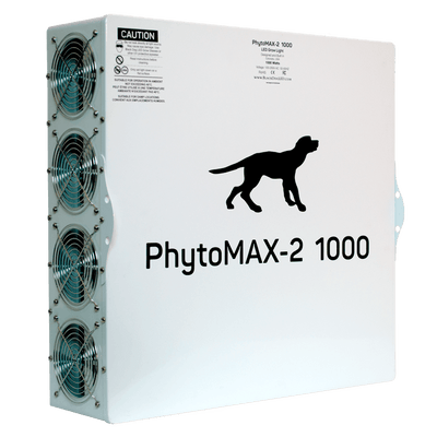Black Dog Back Side phytomax-2 1000