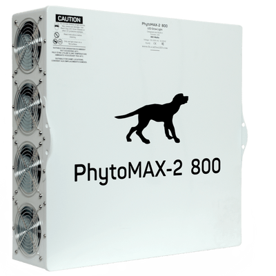 Black Dog Back side phytomax-2 800