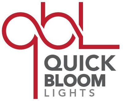 QBL Gift Card LED Light Gift card