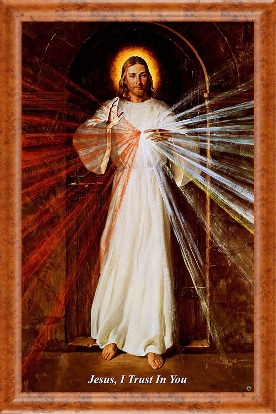Skemp Divine Mercy on Canvas - Frame 8714