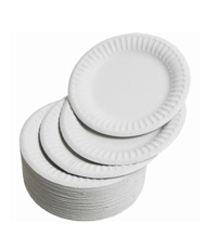 "Paper Plates (King Fisher) 9"" Pack 100"