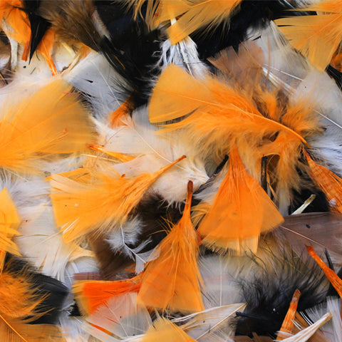 Halloween-Coloured Natural Feathers 50g