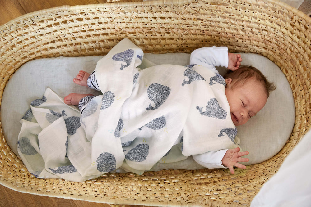 Heavenly Soft Bamboo Swaddle 2 pack