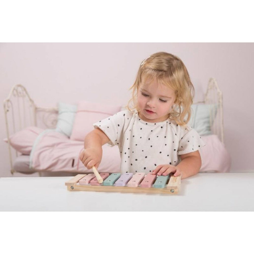 LD Toy Xylophone Adventure