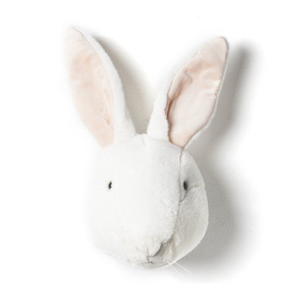 Wall Trophy Rabbit