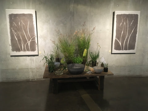 Silverprint artworks, printed with plants and the sun