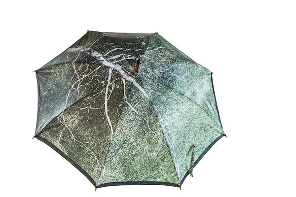 Tree Umbrella