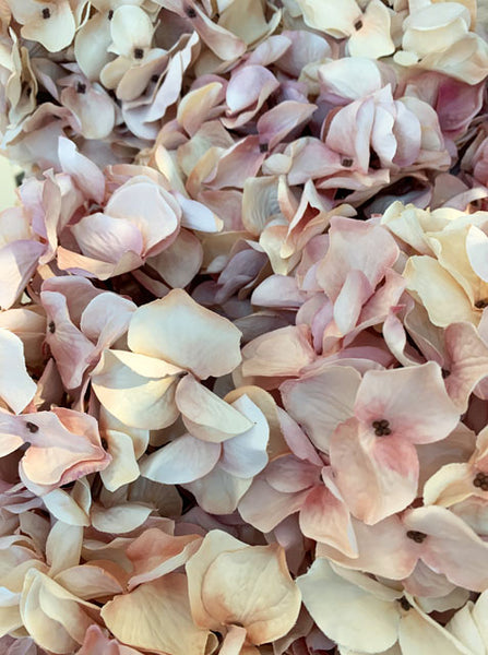 FAUX FLOWER - Blush Hydrangea Spray