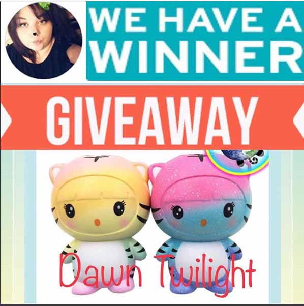 Squishy Giveaway Winner. Thanks to All our Instagram Contestants!