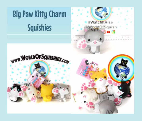 Big Paw Kitty Charm Squishies in all Varieties
