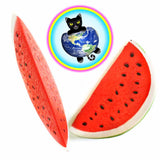 Juicy Watermelon Slice Squishies - IMPERFECT