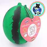 Summer Watermelon Squishy with Hang Tag