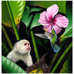 Giclee Art Work - Whiteface Monkey with Hummingbird - Congo Costa Rica
