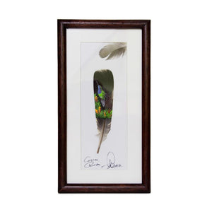Feather painting #3.5