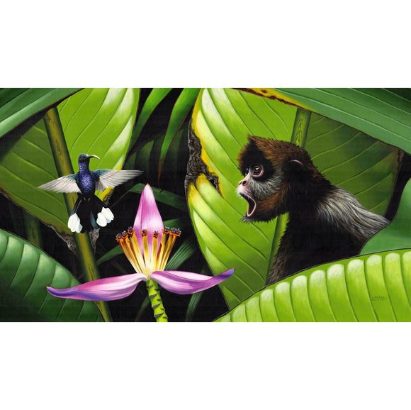 Giclee Art Work - Spider Monkey with Hummingbird - Congo Costa Rica