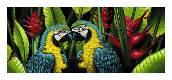 Giclee Art Work - Blue Parrot Couple - Congo Costa Rica