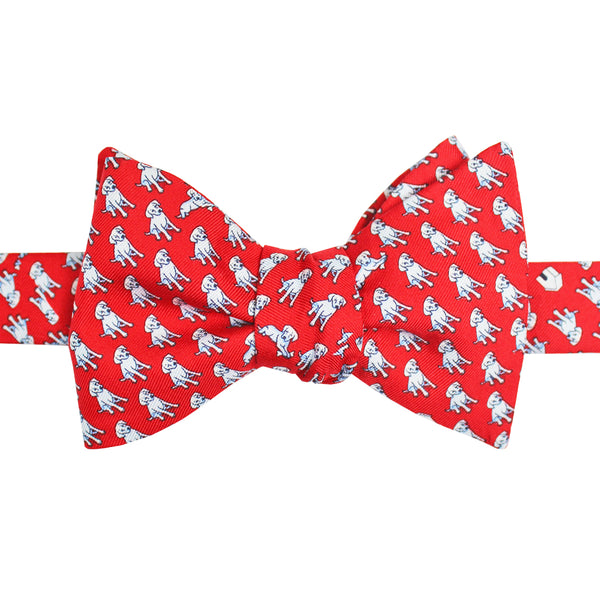 In The Dog House Bow Tie